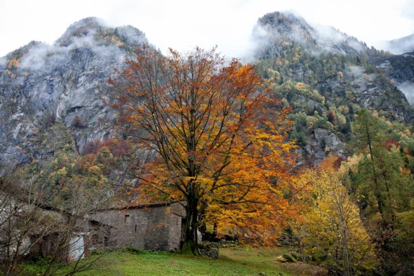 workshop fotografico in val di Mello - Photoprisma